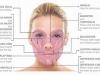 Facelift -sähköinen lihasstimulaatio kasvoille EMS